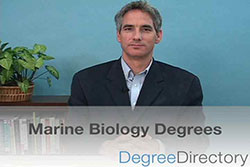 Marine Biology Degrees - Video