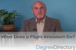 What Does a Flight Attendant Do? - Video