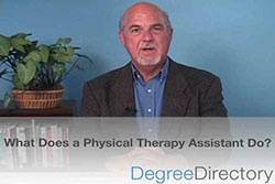 What Does a Physical Therapy Assistant Do? - Video