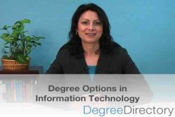 Information Technology Degree Options - Video